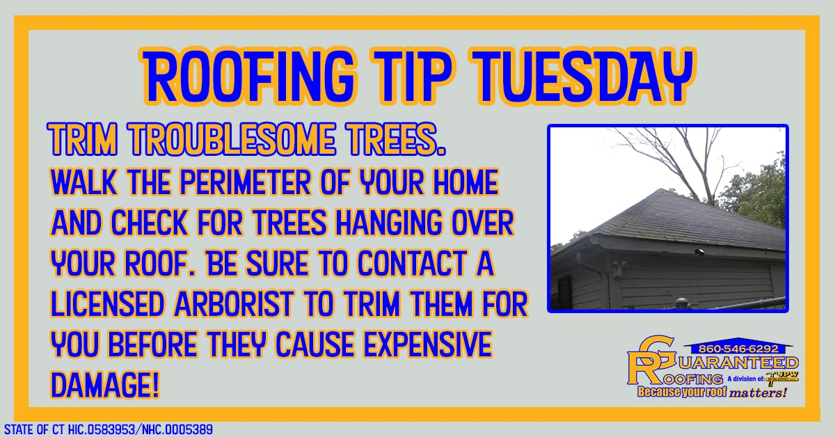 guaranteed-roofing-trim-trees