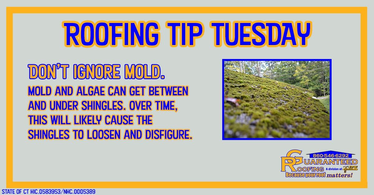 don't-ignore-mold-roofing-tip